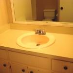 common bathroom (vanity and mirror)